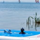 Surfen auf Rügen - Dranske 2010